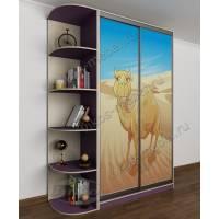 Двухдверный шкаф-купе с красивой фотопечатью фиолетовый